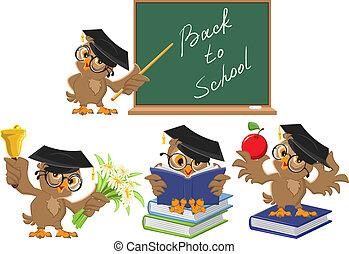 teacher., búho, escuela, conjunto, espalda