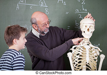 Teacher during anatomy class