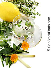 Teacup, herbs and lemon.