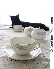 teacup kitty - teacup, with shadow of cat