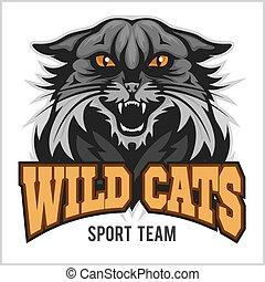 team., deporte, -, wildcat, mascota