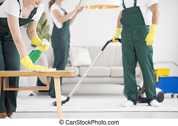 Team of cleaners cleaning room