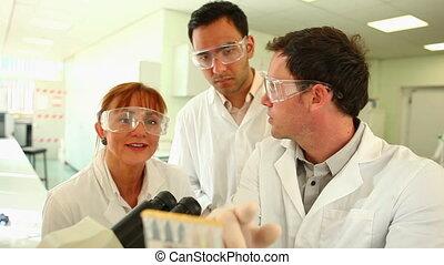 Team of focused scientists at work
