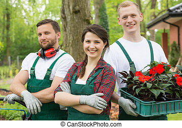 Team of gardeners carrying box of cuttings