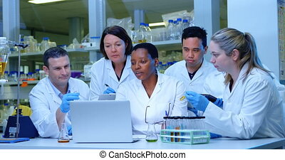 Team of scientists discussing over laptop 4k