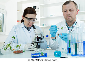 Team of scientists in a laboratory working on chemical...