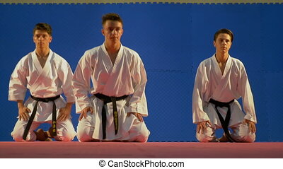 Team of three martial arts practitioners performing bowing...