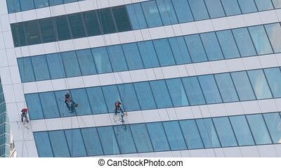 Industrial climbing, occupation, architecture, dangerous job concept. Team of professional washers cleaning modern office building skyscraper glass windows