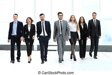 team, wandelende, groep, businesspeople, zakelijk