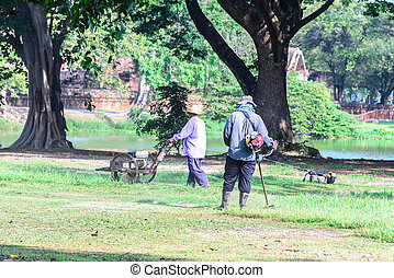 Team worker mowing lawn in garden.