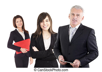 teamwork, profesjonalny, handlowa osoba, okupacja