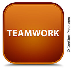 Teamwork special brown square button