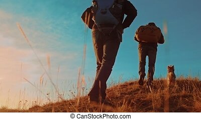 teamwork. two tourists hikers men with backpacks at sunset go hiking trip. hikers adventure and lifestyle the dog go walking. travel mountains silhouette
