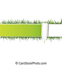 tearing paper and grass vector
