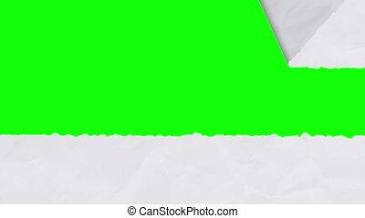 Tearing white paper revealing a green screen - horizontal version