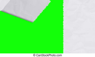 Tearing white paper revealing a green screen - vertical...