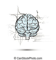 Technical hemisphere of human brain in front view, right side of brain functions concept isolated on white