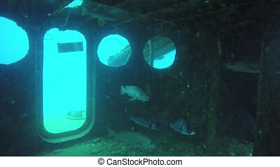 Technical wreck marine scuba diving. Old rusty wartime naval army wreckage remains on the sea bottom. Diver exploring nautical historic world war military shipwreck ruins deep under water in ocean