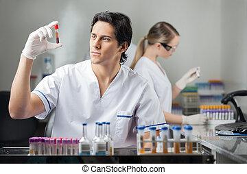 Technician Analyzing Blood Sample In Lab - Male technician...