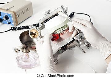 techniker, dental, arbeitende , articulator