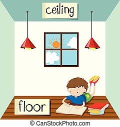 techo, piso, contrario, wordcard