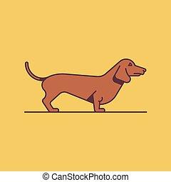 teckel, vecteur, chien, illustration