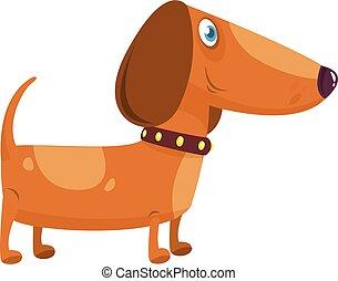 teckel, vecteur, dog., illustration, rigolote, dessin animé