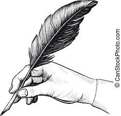 teckning, av, hand, med, a, fjäderer fålla