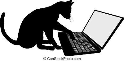 teclado, computador laptop, gato gatinho