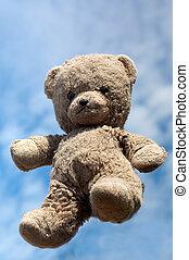teddy, air