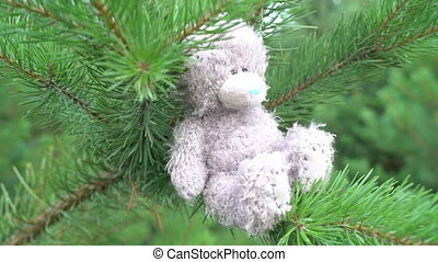 teddy bear children plush toy sitting on the green fir on the wood abandoned