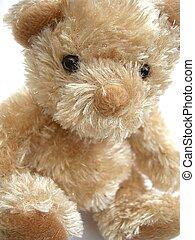 Cute and cuddly bear.