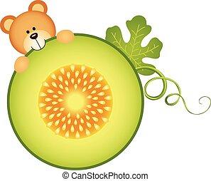 Teddy bear eating cantaloupe melon
