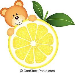 Teddy bear eating lemon slice