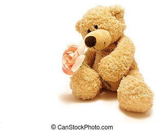 teddy-bear giving rose - the teddy-bear giving the rose as a...