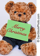 Teddy bear holding a green sign the reads Merry Christmas