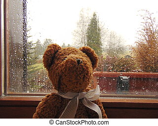 teddy bear in front of window with raindrops