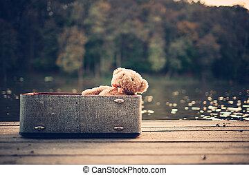 Teddy bear in old bag