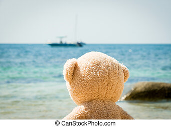 Teddy Bear Looking Out To Sea From The Beach