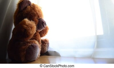 teddy bear looking thru window.
