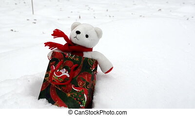 teddy bear snow christmas - white plush teddy bear in...