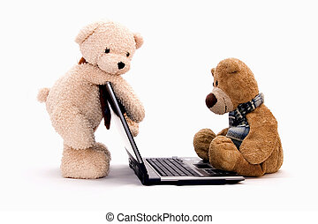 teddy bear - Teddy Bears are surfing on the Internet
