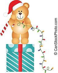 Teddy Bear with Christmas Lights