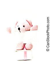teddy bear with sign