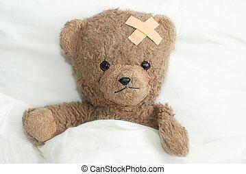 teddy, es, enfermo