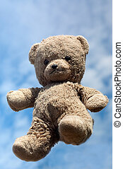 Teddy in the air