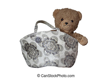 Teddy in the bag