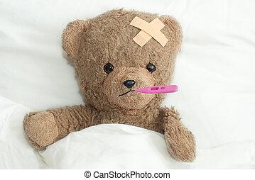 teddy, is, ziek