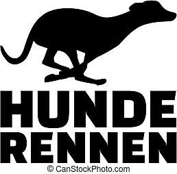 tedesco, levriero, correndo cane, parola