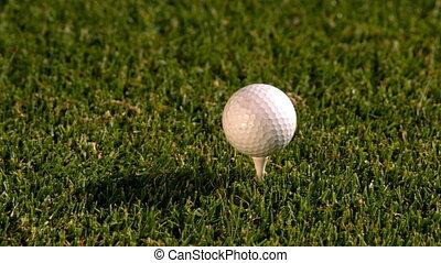 tee golf, fermé, balle, club, frapper